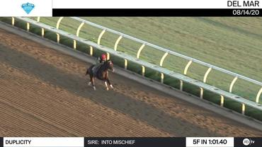 Duplicity Worked 5 Furlongs in 1:01.40 at Del Mar on August 14th, 2020