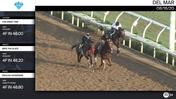 The Great One (Outside), Wipe the Slate (Middle) and Enough Nonsense Worked 4 Furlongs at Del Mar on August 16th, 2020