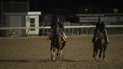 Accelerate Galloped at Churchill Downs on October 30th, 2018