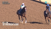 American Pharoah's Full Brother St Patrick's Day Made His Very First Trip to the Track at Santa Anita Park on June 16th, 2017