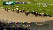 Tacitus Rides the Rail to Victory in the Tampa Bay Derby on March 9th, 2019