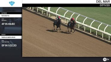 Tintoretto (Outside) and Tiberius Mercurius Worked at Del Mar on July 11th, 2020