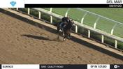 Surface Worked 5 Furlongs in 1:01.80 at Del Mar on August 1st, 2020