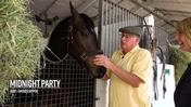 Jimmy Jerkens Shedrow Stroll: Getting to Know Midnight Party