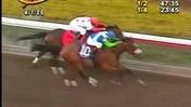 Historic Races: Barbaro Wins The 2006 Florida Derby