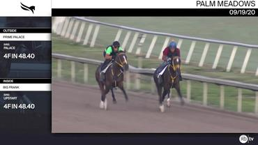 Prime Palace (Outside) and Big Frank Worked 4 Furlongs in 48.40 at Palm Meadows on September 19th, 2020