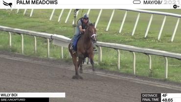 Willy Boi Worked 4 Furlongs in 48.65 at Palm Meadows on May 8th, 2021