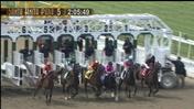 Historic Races: Beholder Wins the 2013 Santa Anita Oaks at Santa Anita Park