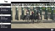 Starship Mufasa (Outside), Follow Q T R (Middle), and Kidtapit (Inside) Worked 5 Furlongs at Gulfstream Park on October 17th, 2020