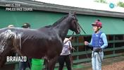 Bravazo Got A Bath After Jogging at Pimlico Race Course on May 15th, 2018