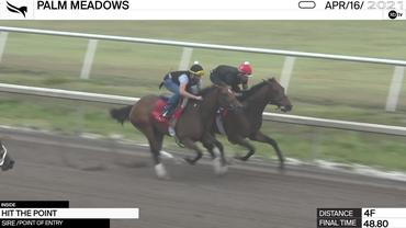 Hit the Point (Inside) Worked 4 Furlongs in 48.80 at Palm Meadows on April 16th, 2021