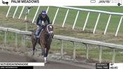 Notherdaynparadise Worked 4 Furlongs in 49.40 at Palm Meadows on January 18th, 2021