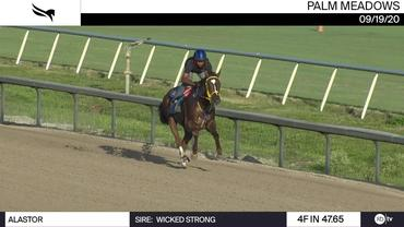 Alastor Worked 4 Furlongs in 47.65 at Palm Meadows on September 19th, 2020