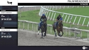 Assert Dominance (Outside) and Uncage the Cat Worked 3 Furlongs in 37.20 at Palm Meadows on November 14th, 2020