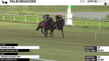 Diabolic (Outside) and French Franc Worked 4 Furlongs at Palm Meadows on April 16th, 2021
