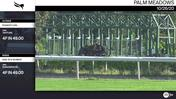 Frankie's Girl (Outside) and an Unnamed Horse Out of the Dam Rite Moment Worked 4 Furlongs in 49.00 at Palm Meadows on October 26th, 2020