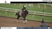 Hot Rod Charlie Galloped at Keeneland on October 30th, 2020