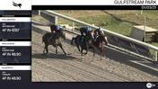 Collaborate (Outside/Behind), Irish Honor (Middle), and Allworthy Worked 4 Furlongs at Gulfstream Park on January 3rd, 2021