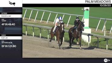 Peaceful Way (Outside) and Ruby Lee Worked at Palm Meadows on October 26th, 2020