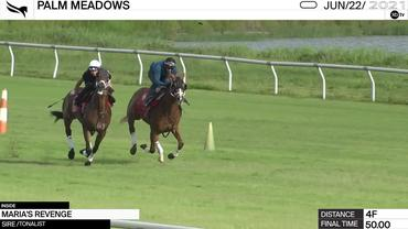 Maria's Revenge (Inside) Worked 4 Furlongs in 50.00 at Palm Meadows on June 22nd, 2021