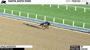 Cruel Intention Worked 5 Furlongs in 1:00.00 at Santa Anita Park on February 6th, 2021