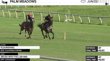 Flourishing (Outside) and Brush With the Law Worked 4 Furlongs in 49.80 at Palm Meadows on June 22nd, 2021