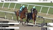 Diamond What (Outside) and Andie One Worked 4 Furlongs in 48.70 at Palm Meadows on January 19th, 2021