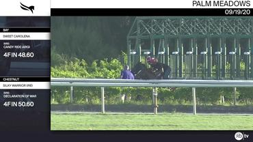 Sweet Carolena (Bay) and Silky Warrior (Chestnut) Worked 4 Furlongs at Palm Meadows on September 19th, 2020