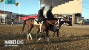 Market King Prepares for the Preakness at Pimlico Race Course on May 15th, 2019