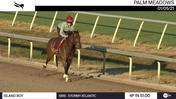 Island Boy Worked 4 Furlongs in 51.00 at Palm Meadows on January 5th, 2021