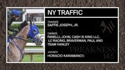 Get To Know the Saffie Joseph Trained Ny Traffic