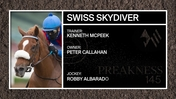 Get To Know The Multiple Graded Stakes Winner Swiss Skydiver