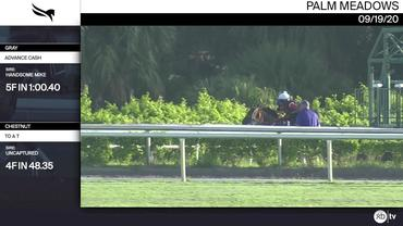Advance Cash (Gray) and To a T (Chestnut) Worked at Palm Meadows on September 19th, 2020