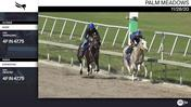 Kiger (Outside) and Everesting Worked 4 Furlongs in 47.75 at Palm Meadows on November 28th, 2020