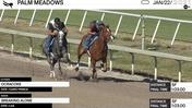 Ocracoke (Outside) and Breaking Alone Worked 5 Furlongs in 1:03.00 at Palm Meadows on January 22nd, 2021