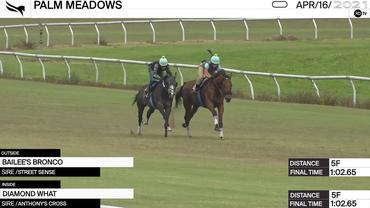 Bailee's Bronco (Outside) and Diamond What Worked 5 Furlongs in 1:02.65 at Palm Meadows on April 16th, 2021