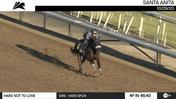 Hard Not To Love Worked 4 Furlongs in 48.40 at Santa Anita Park on October 29th, 2020