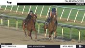 Pretty Priscilla (Outside) Worked 4 Furlongs in 48.65 at Palm Meadows on October 26th, 2020