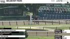 Thefabulous Moolah (Outside) and Cee Are Em Worked 4 Furlongs in 50.08 at Belmont Park on June 18th, 2021