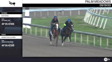 Zia's Song (Outside) and Under the Couvers Worked 4 Furlongs in 47.65 at Palm Meadows on September 19th, 2020