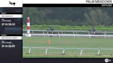 An Unnamed Horse out of the Dam Kawaguchi (Front) and an Unnamed Horse out of the Dam Spiritual Leader Worked 3 Furlongs at Palm Meadows on July 11th, 2020
