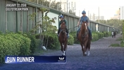 Gun Runner is Heading to the Track at Gulfstream Park on January 22nd, 2018