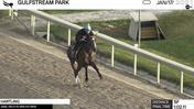 Hartling Worked 5 Furlongs in 1:02.11 at Gulfstream Park on January 17th, 2021