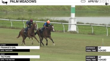 Frankie's Girl (Outside) and Factoire Worked 5 Furlongs in 1:04.80 at Palm Meadows on April 16th, 2021