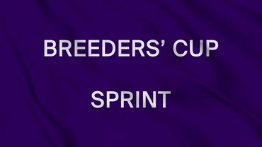 1st Bet Trends and Analysis for the Breeders' Cup Sprint