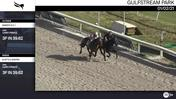 Nimer's N C I (Outside) and Kurt's a Keeper Worked 3 Furlongs in 39.62 at Gulfstream Park on January 2nd, 2021