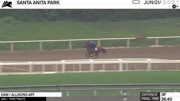 An Unnamed Horse out of the Dam Allisons Art Worked 3 Furlongs in 38.40 at Santa Anita Park on June 21st, 2021