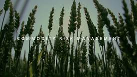 Thumbnail for entry Commodity Risk Management