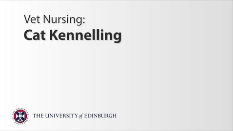 Thumbnail for entry Vet Nurse: Cat Kennelling