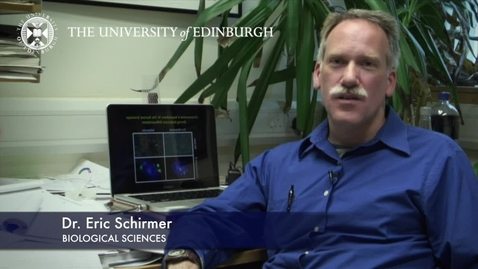 Thumbnail for entry Eric Schirmer - Biological Sciences- Research In A Nutshell - School of Biological Sciences -14/11/2012